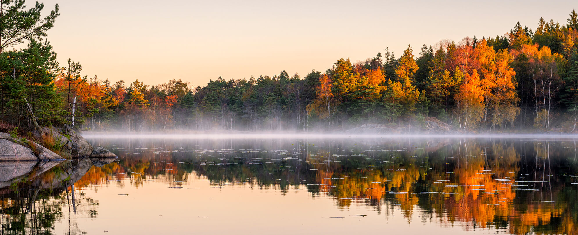 Fog covered lake surrounded by an autumn forrest